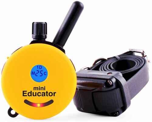 #1. EDUCATOR Mini-Ergonomic Small Receiver Remote E-Collar Dog Training Collar (Yellow)