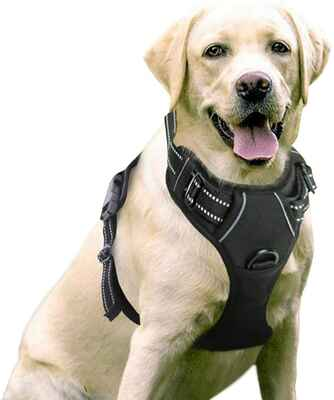 #3. Rabbitgoo No-Pull Adjustable Tactical Dog Harness Vest Large w/Handle w/Leash Clips for Walking