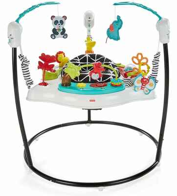 #3. Fisher-Price Removable Machine Washable Seat Pad Freestanding Infant Jumper Wonders Jumperoo