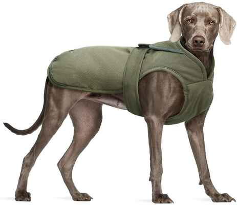 #5. KUOSER Leash Small Medium Large Water-Repellent Canvas Cold Weather Dog Coat
