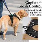 Top 10 Best Tactical Dog Harnesses in 2021 Reviews