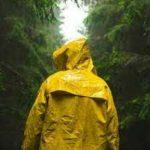 Top 10 Best Waterproof Hooded Raincoat in 2021 Reviews